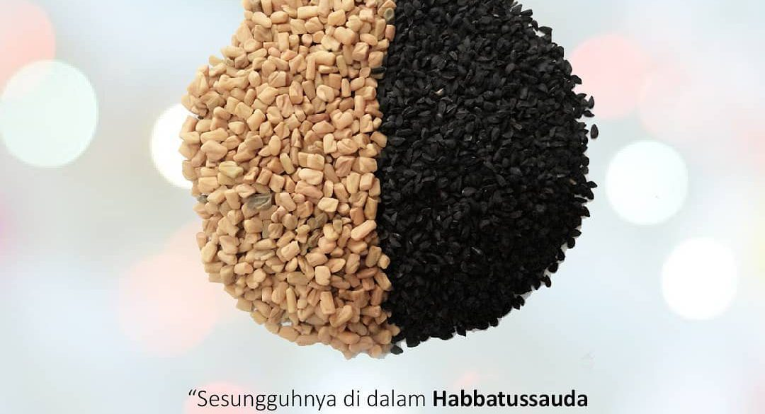 manfaat herbal habatasauda