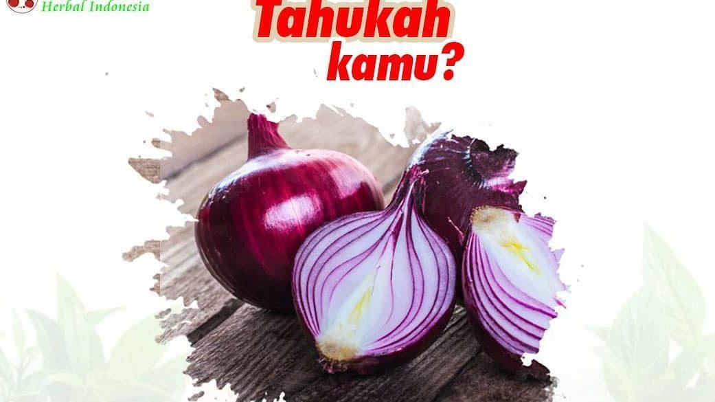 bawang merah dan khasiatnya