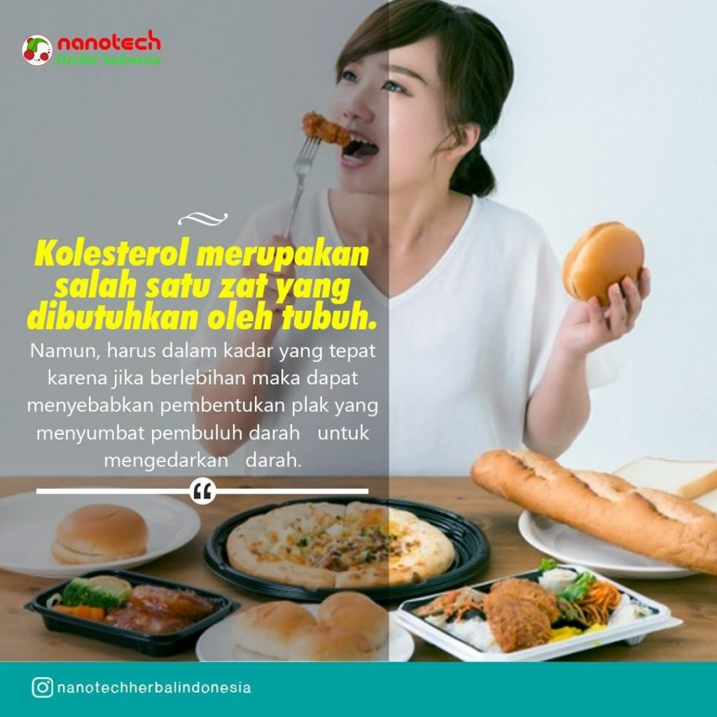 makan pengendali kolesterol