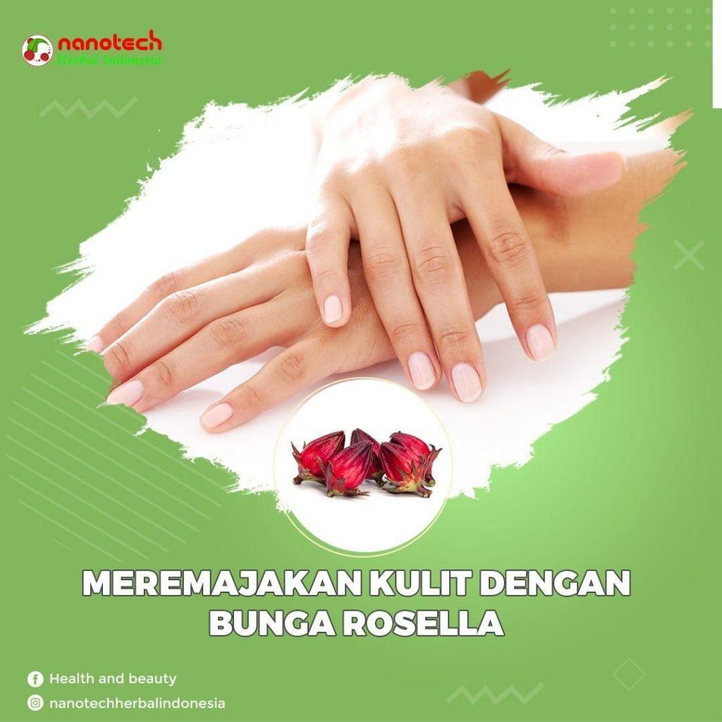 manfaat bunga rosella