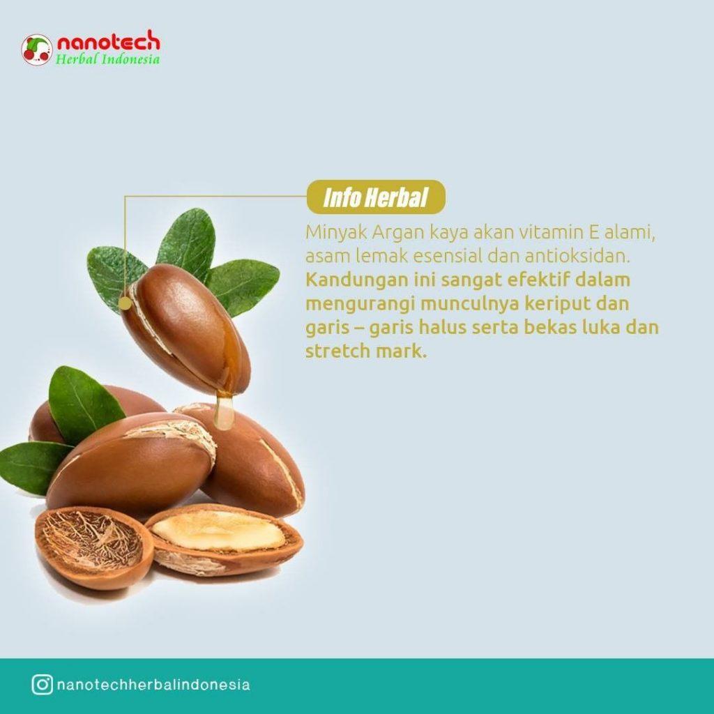 info herbal minyak argan